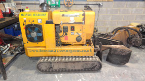 Stump Grinding Basingstoke - Foremost Treesurgeons